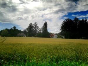 Field in Ebenhausen, Germany