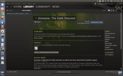 Steam on Ubuntu